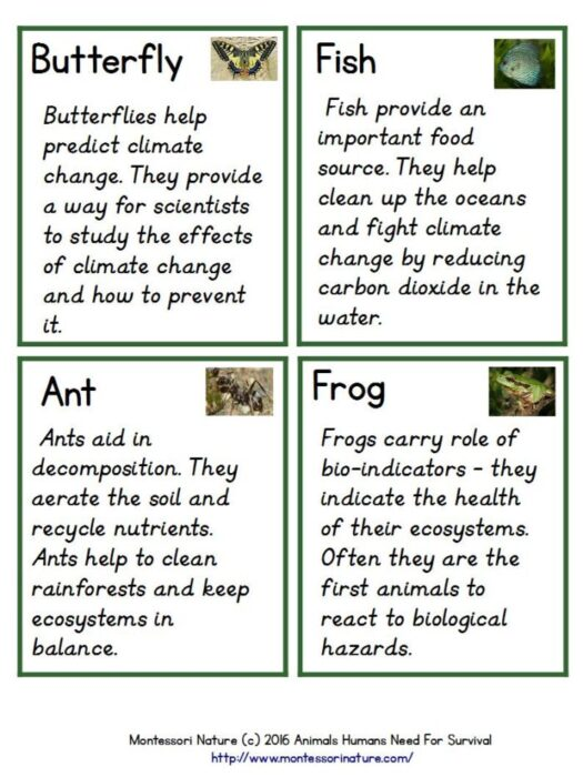 animals that help humans survive - montessori nature