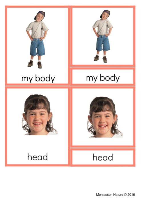 Angels in Art Montessori Nomenclature Cards