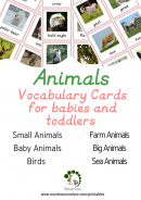 Animal Cards For Toddlers