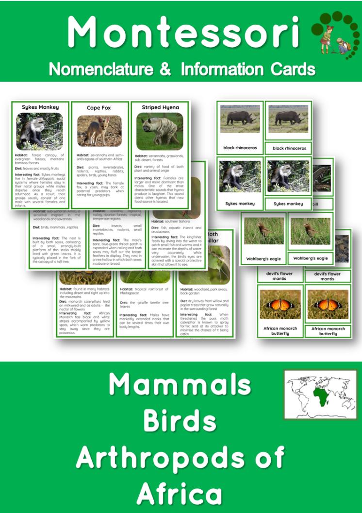 Montessori Nomenclature Cards How to Create and Use Nomenclature Materials