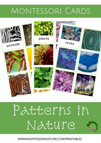 patterns in nature Montessori Nature