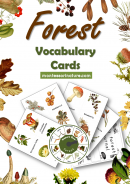 Forest Vocabulary Cards Montessori Nature