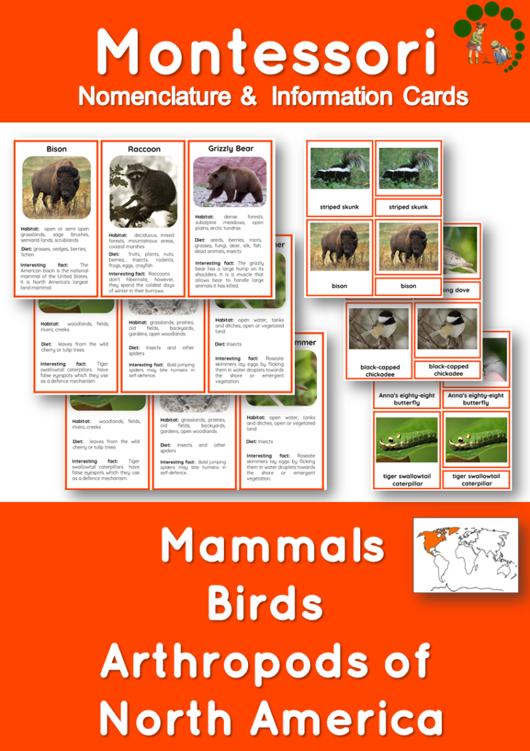 45 Animals Of North America Nomenclature