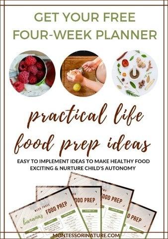 Four-week-planner
