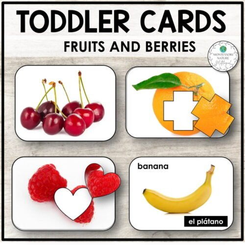 Title Toddler Cards Fruits and Berries, different types of fruits included in the printable - orange, cherries, banana.