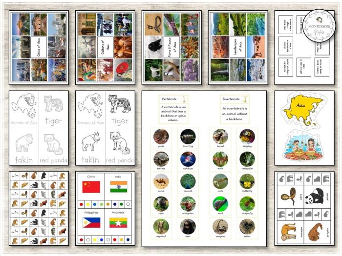 Asia Hands-on Activities - Montessori Inspired