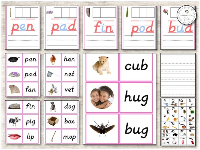 CVC Phonics Cards Word Building Mats Montessori Nature Preview