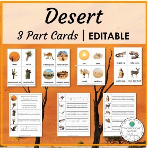 Desert 3 Part Cards